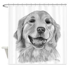Golden Retriever Shower Curtain By Pencil Art By Lisa May Art