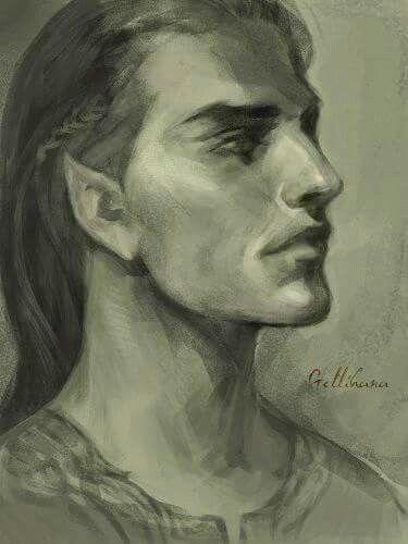 Image result for elvens
