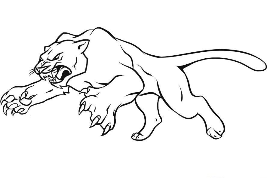 schwarzer panther malvorlage  kinder ausmalbilder
