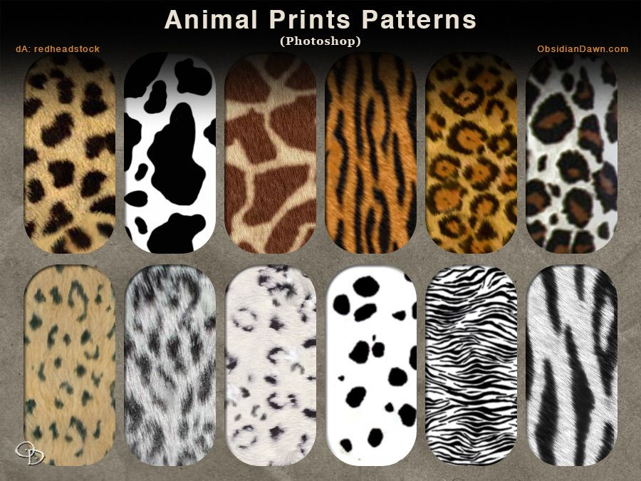 Animal Prints Photoshop Patterns by redheadstock deviantart com on