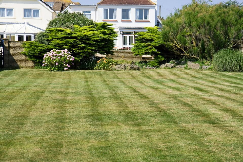 Didyouknow The Average Lawn Size For A Home Is 1 5 Of An Acre Funfact What Are Your Plans This 4thofjuly Backyard Landscaping Lawn Care Lawn Maintenance