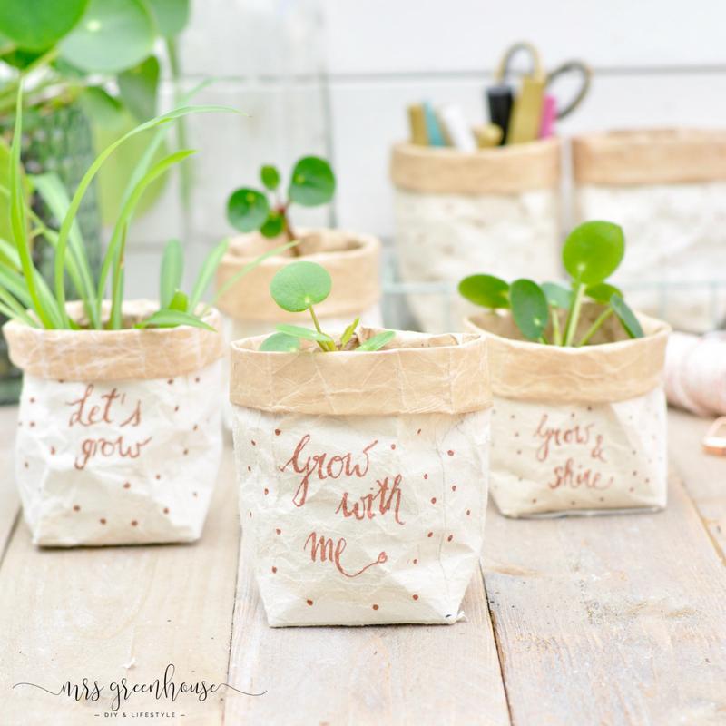 Photo of Milchtüten-upcycling – DIY für kleine Pflanztöpfe auf mrsgreenhouse.de