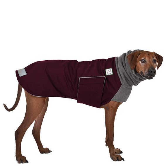 Rhodesian Ridgeback Winter Dog Coat Winter Coat For Dogs Etsy Dog Winter Coat Dog Coats Rhodesian Ridgeback