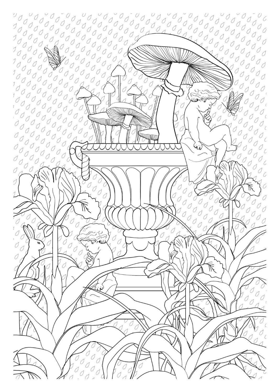 Luxo Desenhos Para Imprimir E Colorir Floresta Encantada