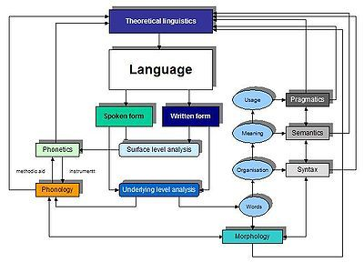 Linguistic I Based On The Grammar Of A Language Which Consist Next Field Phonetic Morphology Study Pragmatics Dissertation Examples Example