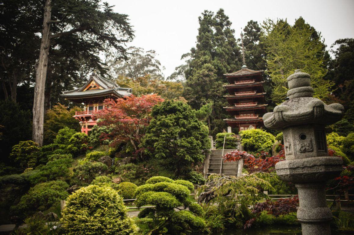 Tips For Visiting The San Francisco Japanese Tea Garden in