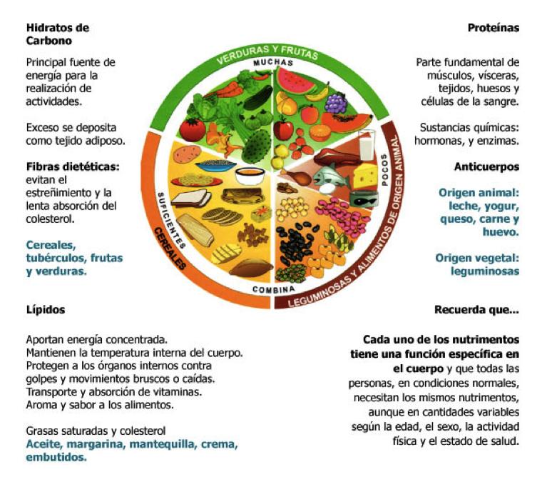 Tip Plato Del Bien Comer Y Pirámide Nutricional Plato Del Buen Comer Plato Del Bien Comer Piramide Nutricional