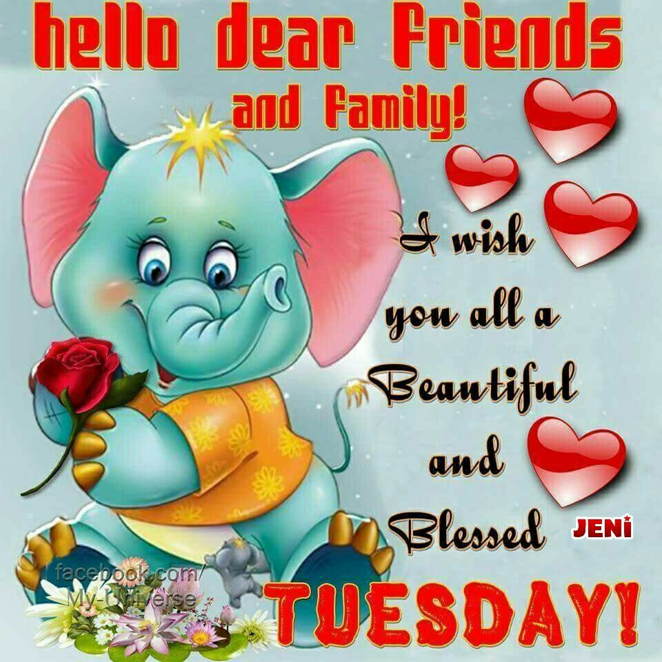 Have a beautiful tuesday   Have a blessed sunday
