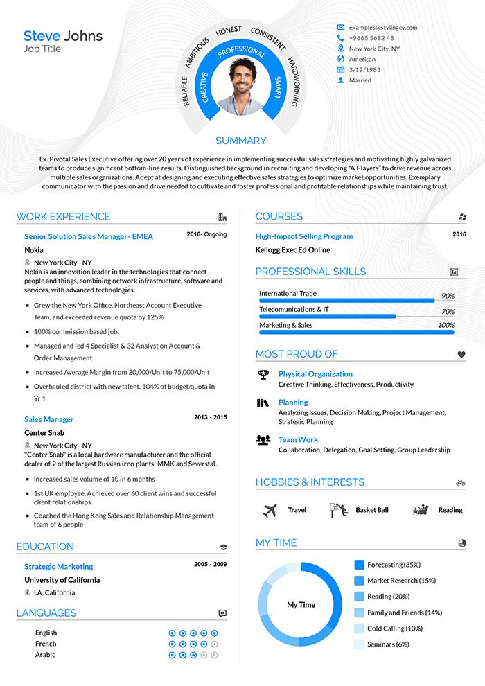Professional Resume Builder Stylingcv 2020