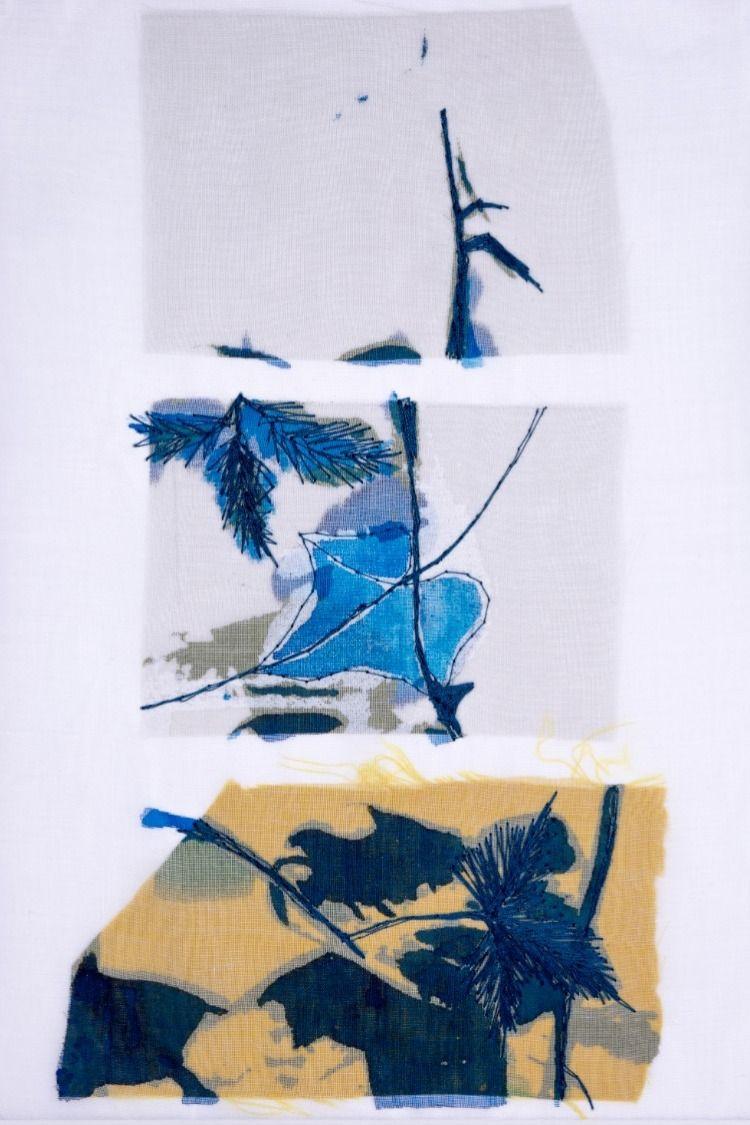 Canson paper screen printed fabric silk organza ecoline