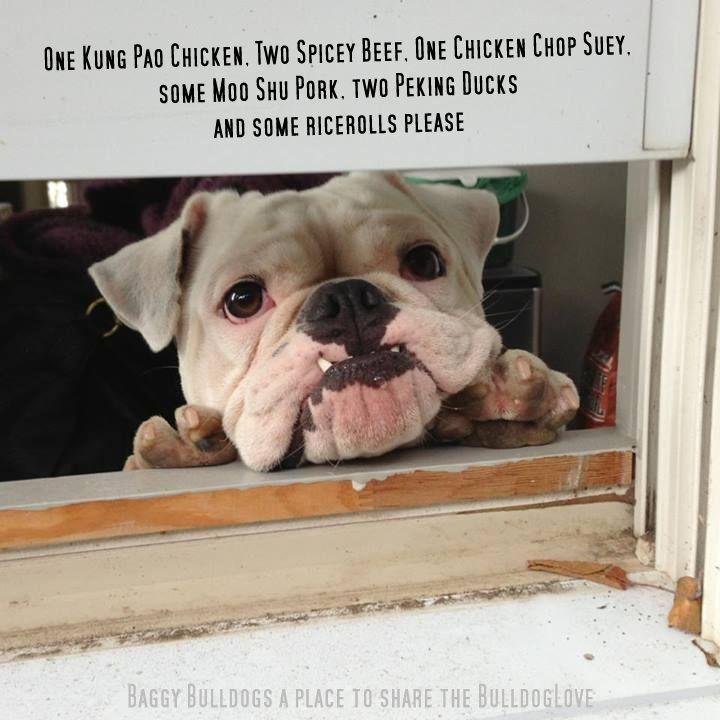 Bulldogs food rules bulldog bulldog puppies cute animals