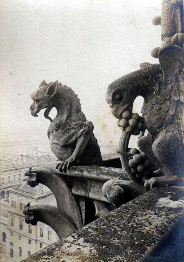 Gargouilles Notre Dame De Paris : gargouilles, notre, paris, Cathédrale, Notre-Dame, Paris,, Gargouilles, Chimères,, Renaissance, Architecture,, Human, Painting,, Gargoyles