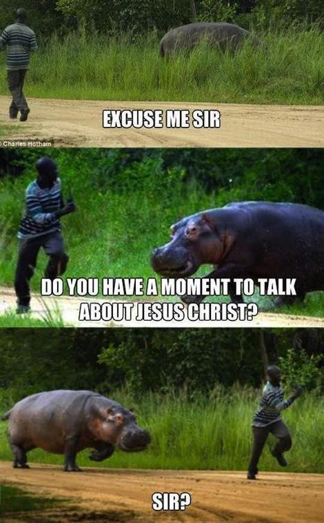 Have You Heard The Good News Funny Pictures Funny Laugh