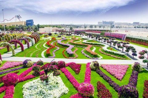 Miracle Garden Dubai Book Tickets Tours Getyourguide Com In 2020 Miracle Garden Beautiful Flowers Garden Dubai Garden