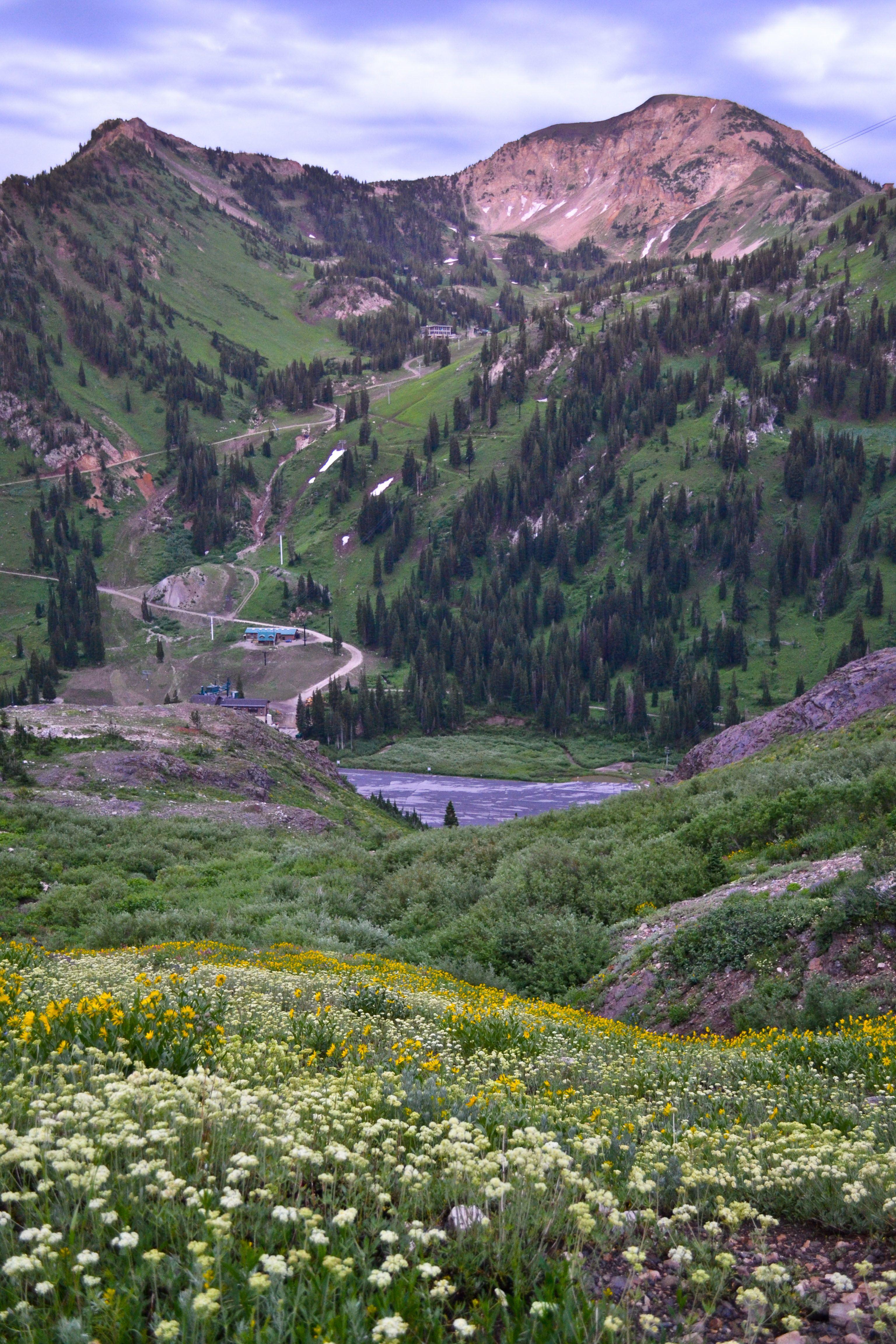 Cardiff Pass Hike Utah hikes, Hiking, Breathtaking views