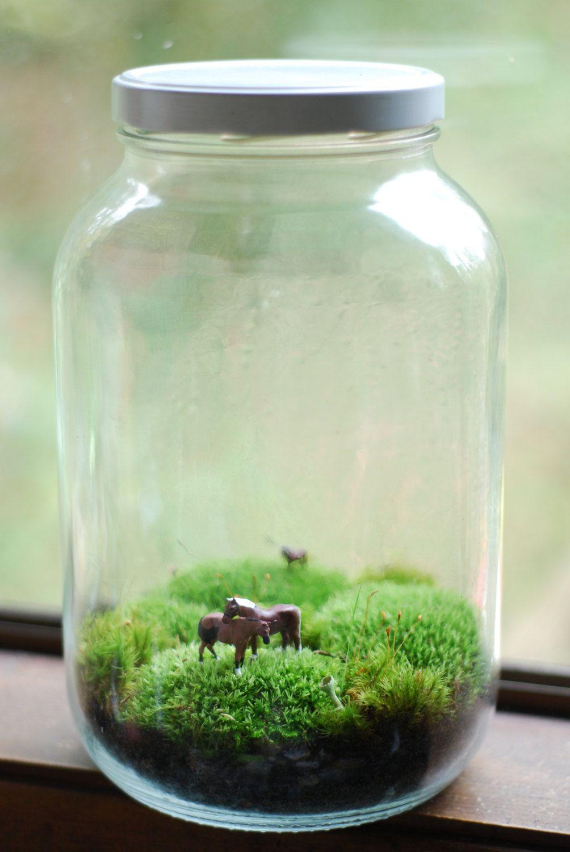 Lovely horses large moss terrarium art pinterest moss