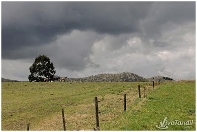 Finde de paseo por las sierras de Tandil: http://www.vivotandil.com/