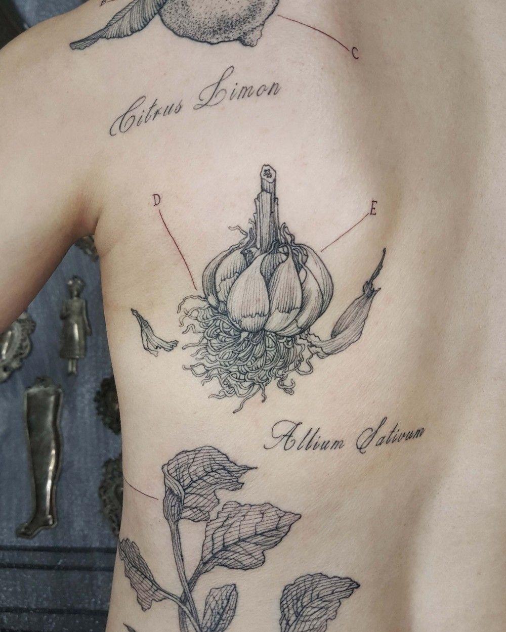 Garlic Botanical Illustration Etching Linework Engraving Milan Italy Purotattoostudio Marcocmatarese Etching Tattoo Engraving Tattoo Botanical Tattoo