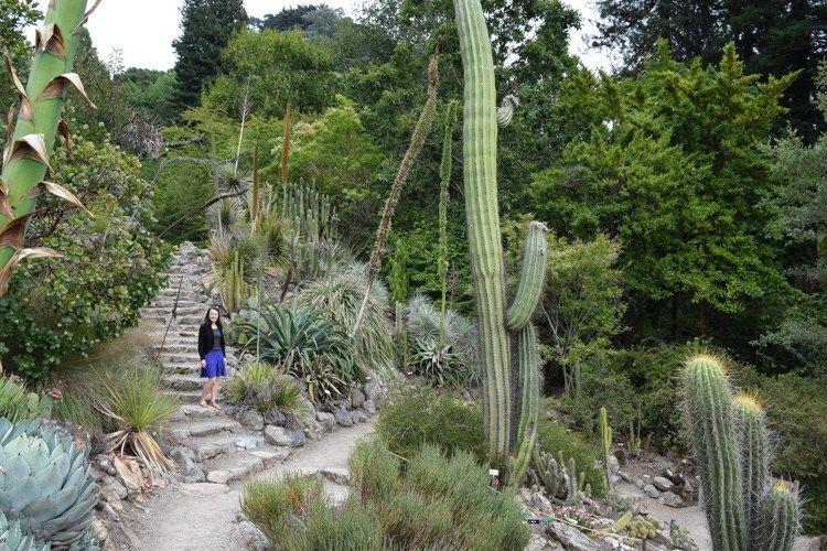 Ryan Kelly Berkeley Botanical Gardens Uc Berkeley Botanical Gardens Botanical Marrying My Best Friend