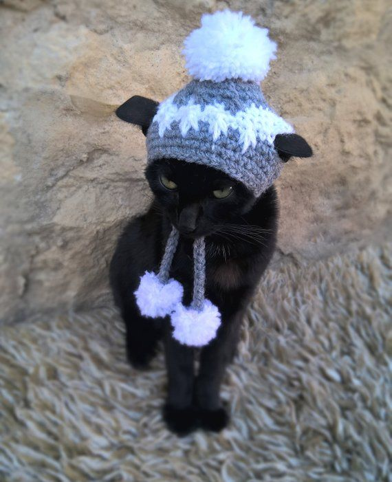 904fa024b92 Hat for Cat