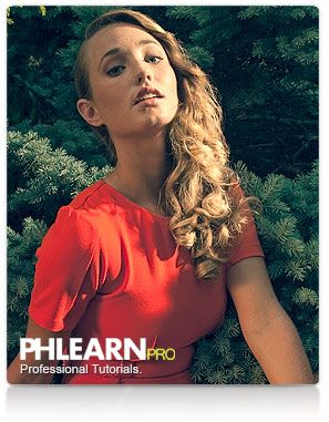 phlearn photography 101 pro