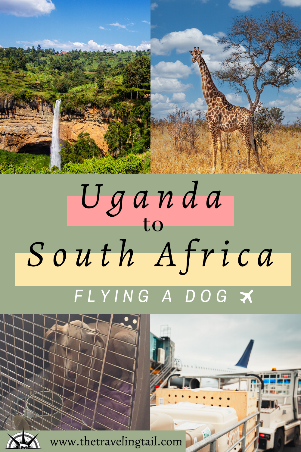 Uganda To South Africa In 2020 Flying With Pets Dog Travel Dog Mom Gifts