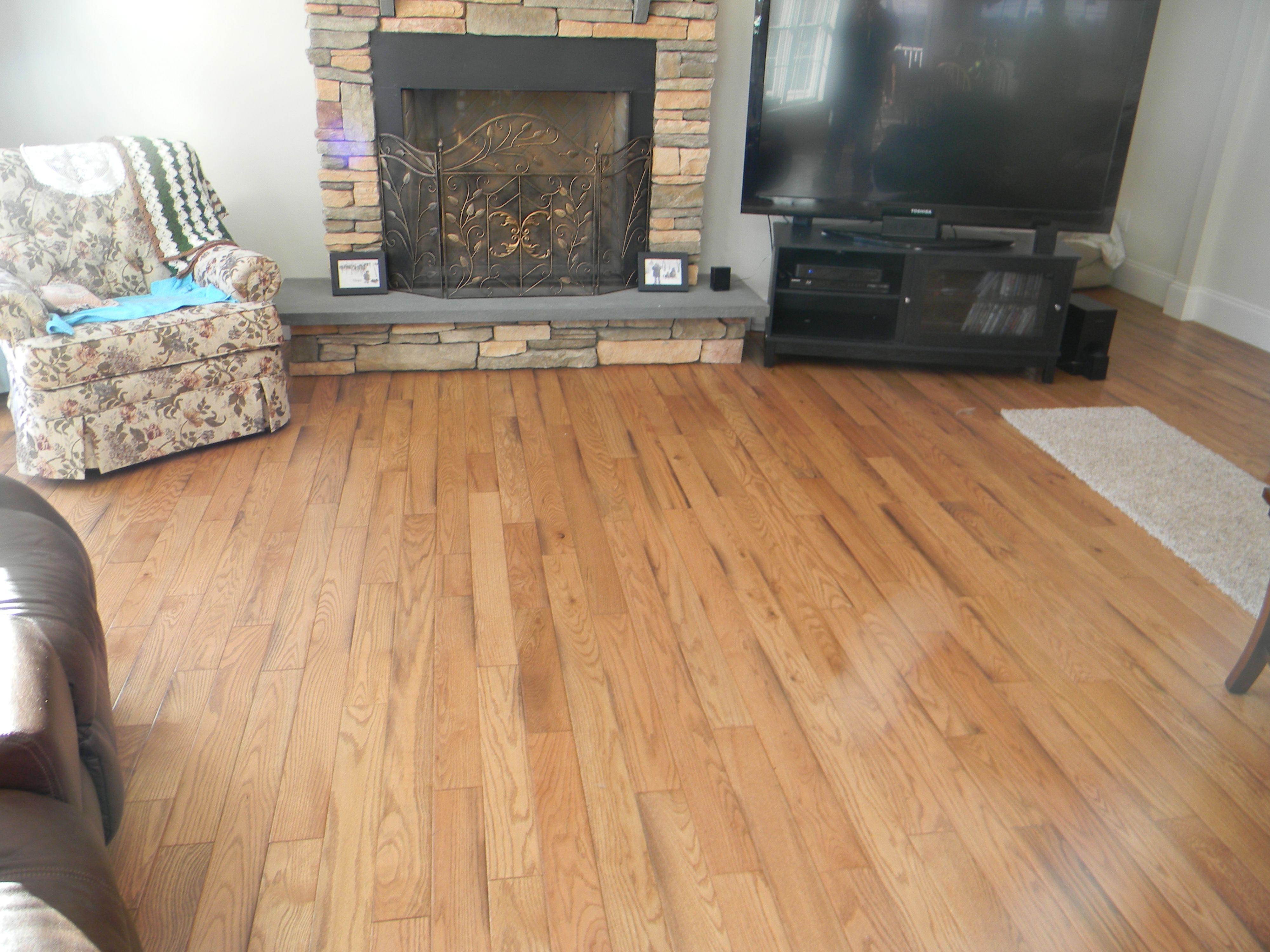 Cork flooring vs wood laminate httpdreamhomesbyrob cork flooring vs wood laminate dailygadgetfo Choice Image