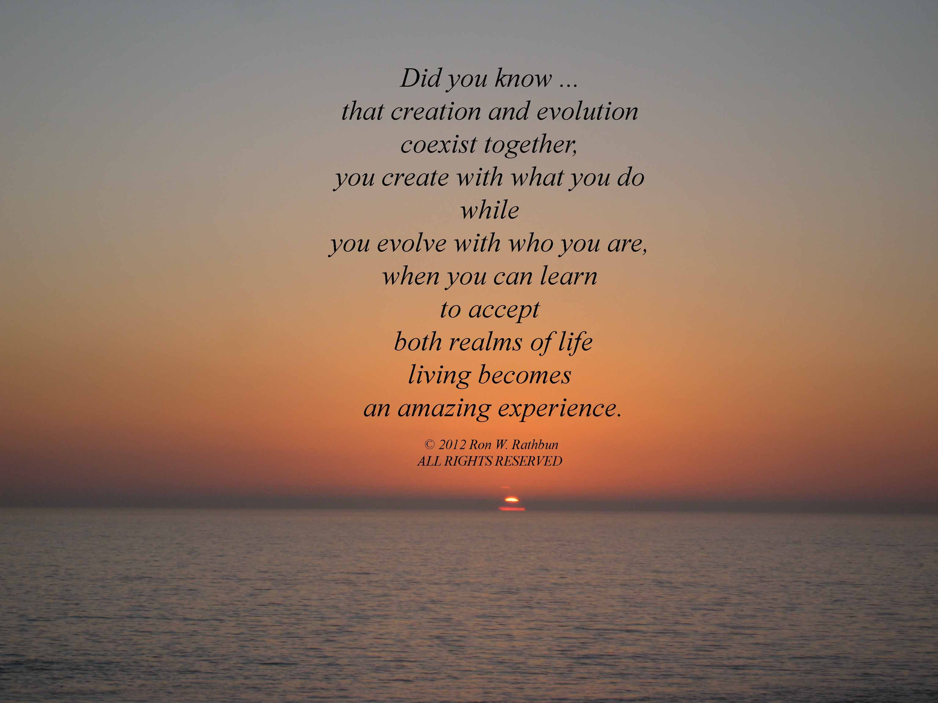 Reflection Quotes About Life Enchanting The Quote Was From The Mind And Self_Reflectiondescription From