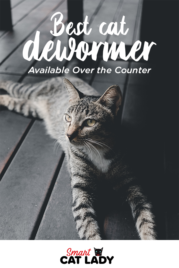Best Dewormer For Cats Available Over The Counter Cats Cat Dewormer Cat Facts