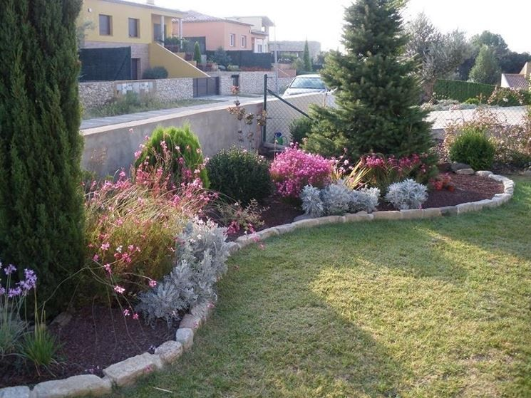 piante giardino fai da te idee giardinaggio pinterest