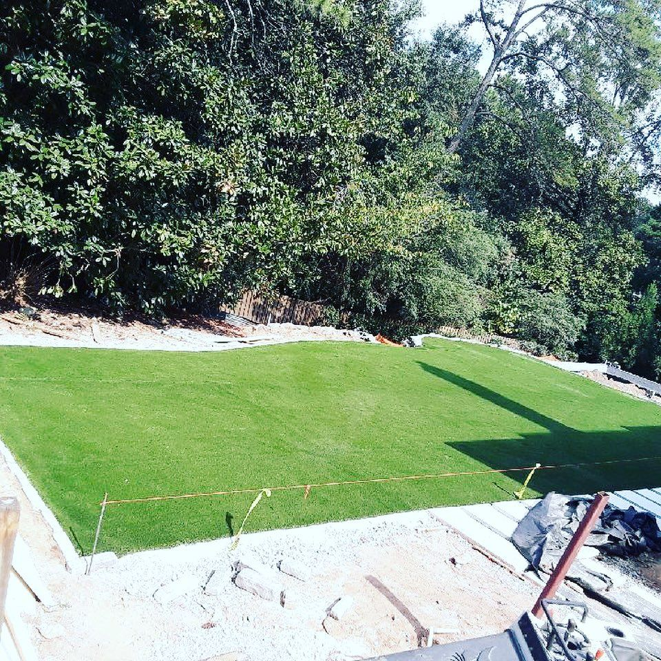 Maintenance free lawn!