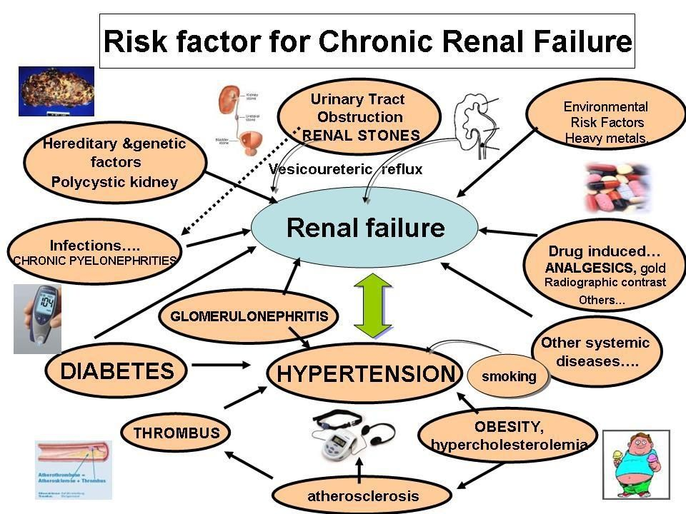 Renal Failure Concept Map.Chronic Kidney Disease Stages Metabolic Pinterest Kidney