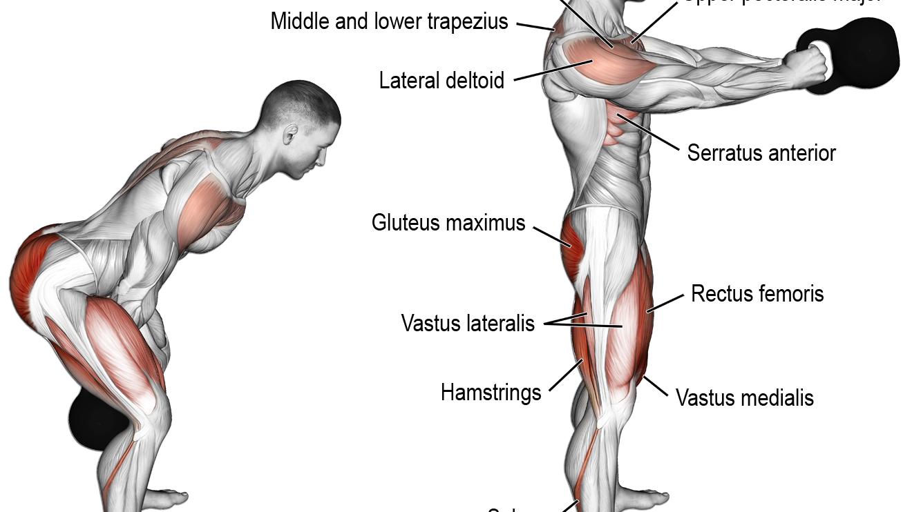 Kettlebell swing exercise   Fitness. Anatomía de ejercicios ...