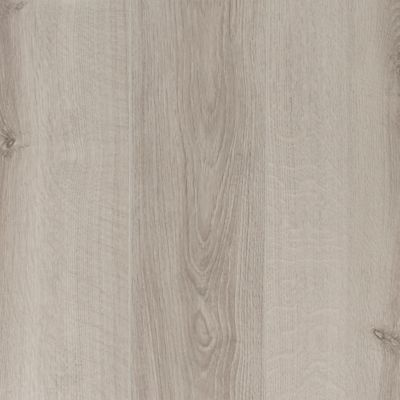 P This 10mm Webster Laminate Has A Lifetime Residential 10 Year Commercial Warranty P P Looking For The Warmth And With Images Flooring Laminate Flooring Oak Laminate