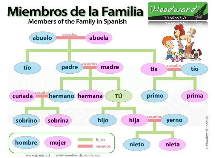 Vocabulario De La Familia Aprender Espanhol Espanhol Lingua