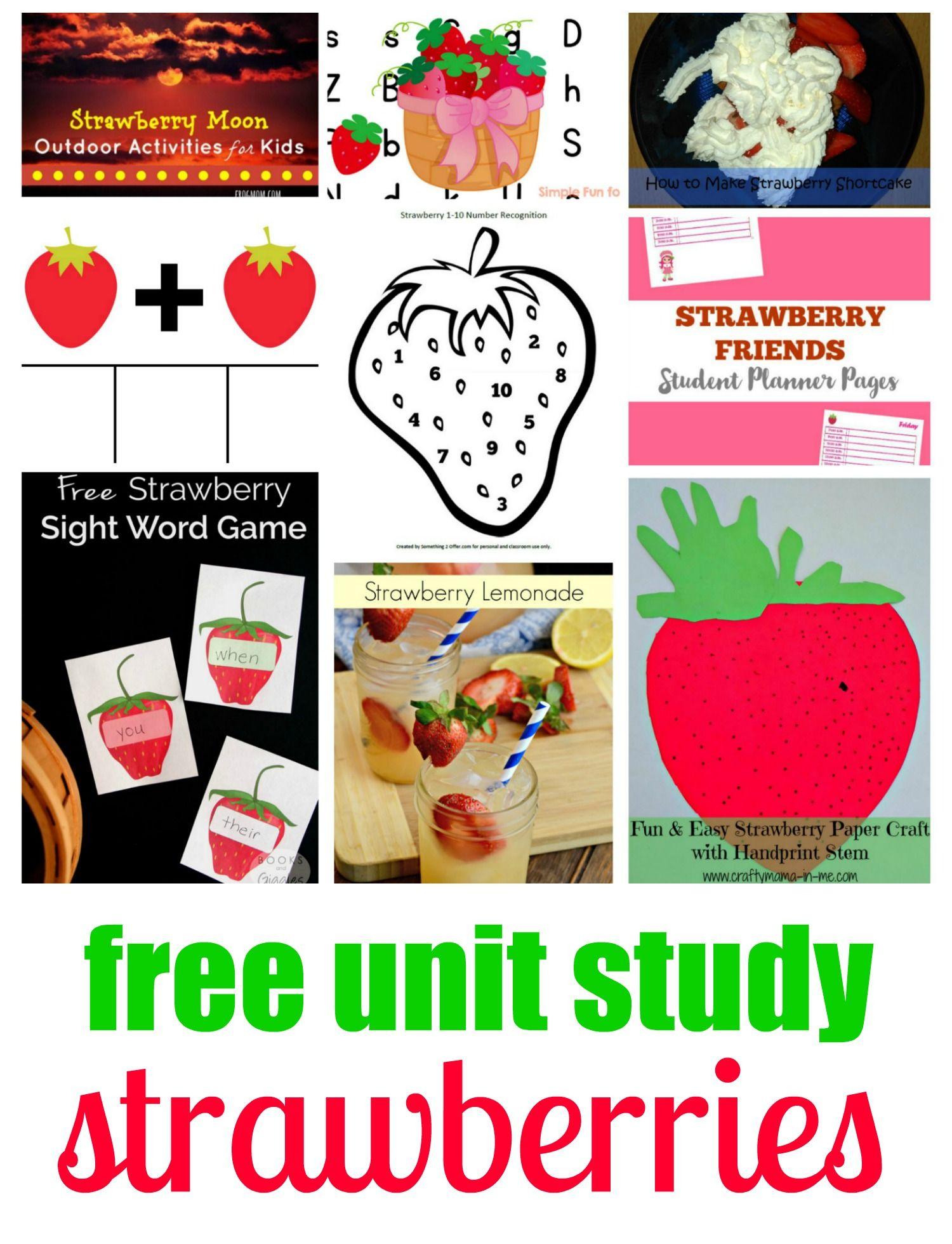 Strawberries Nature Study