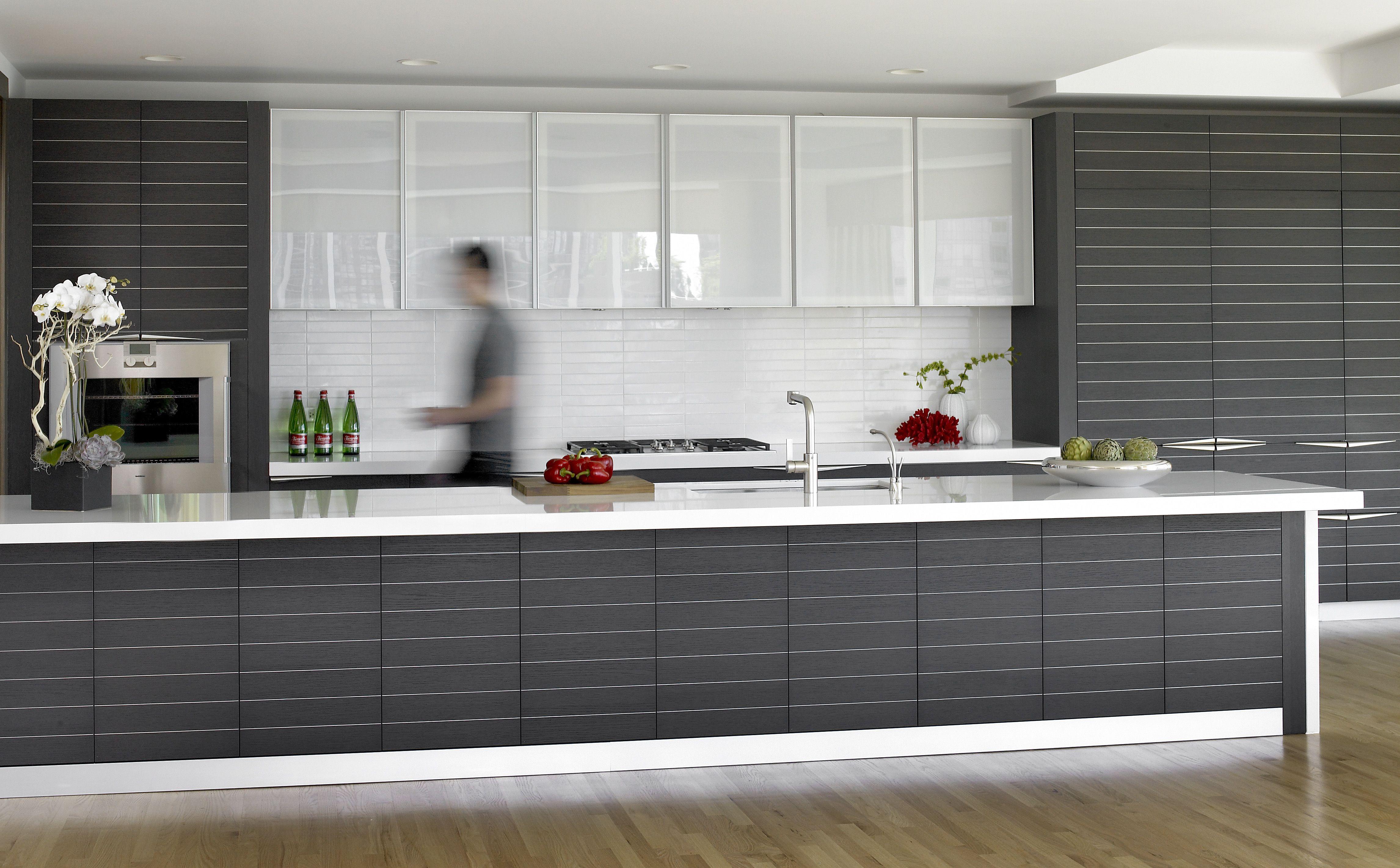 Downtown Chicago European Kitchen Cabinets Modern Kitchen