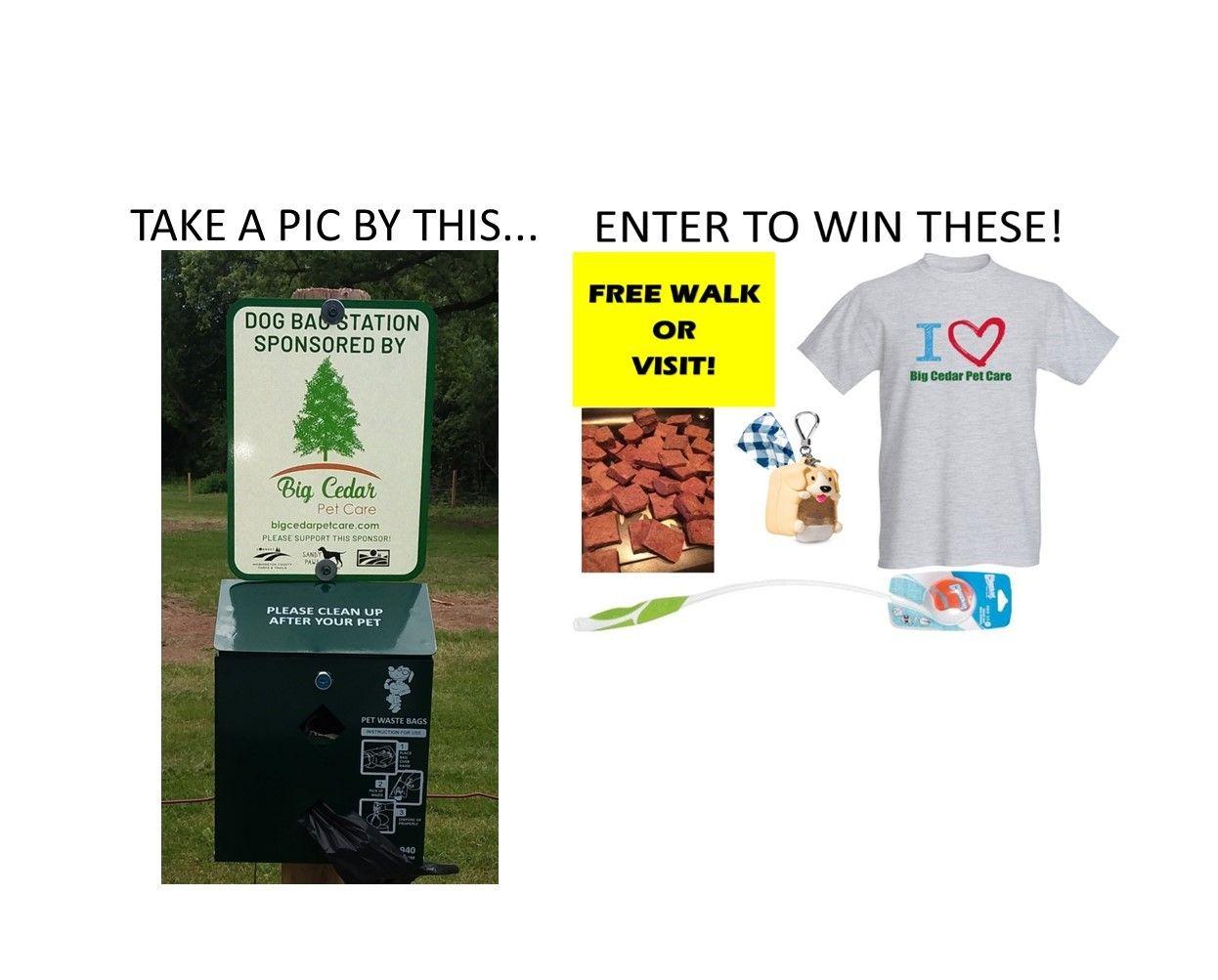 Photo Contest in 2020 Photo contest, Pet car, Dog park
