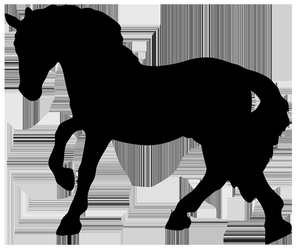 Horse Silhouette Horse Silhouette Horses Horse Art