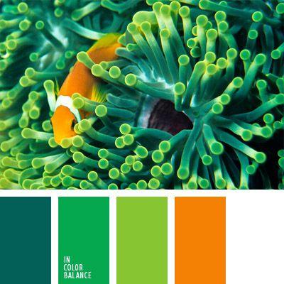 anaranjado y blanco, anaranjado y verde, color aguamarina, color pez