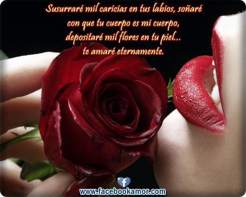 Rosas Rojas Con Frases De Amor: Imagenes-de-rosas-hermosas-con-frases-de-amistad.png (500