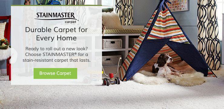 STAINMASTER® Carpet | Wayfair