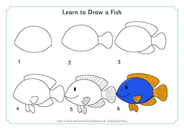 20 Easy Animals To Draw For Practice Page 2 Of 2 Hobby Lesson Easy Animal Drawings Fish Drawings Animal Drawings