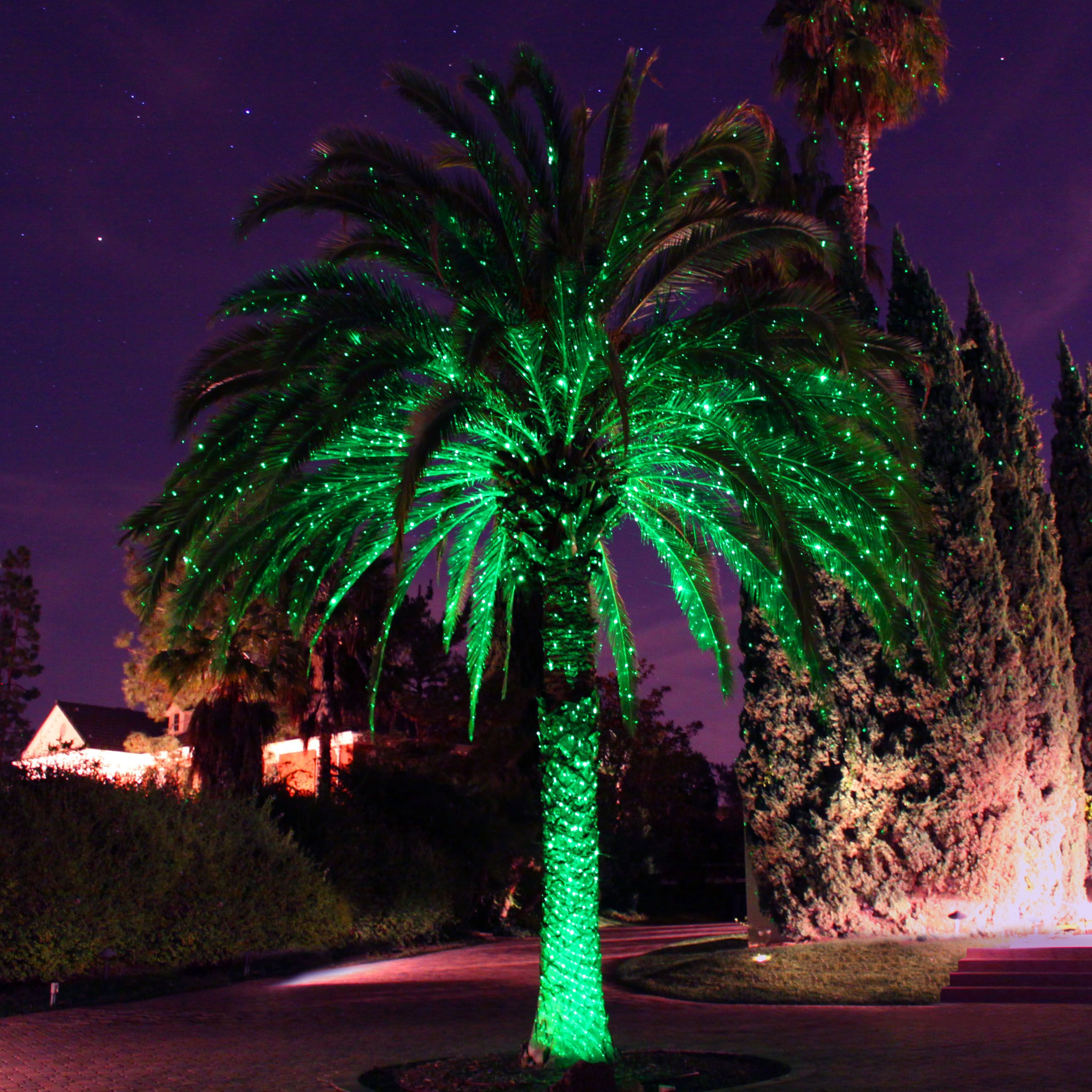 Still Have Your Red Green Laser Lights Out Don T Put Them Away Simply Turn Off The Red Laser For Instant Spring In 2020 Easy Landscaping Landscape Lighting Landscape