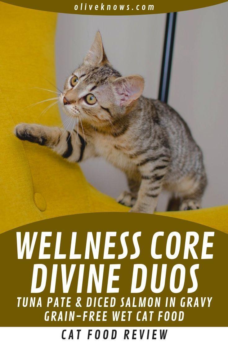 Wellness core divine duos tuna pate diced salmon in