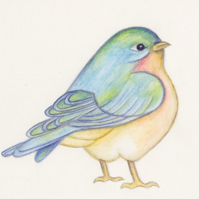 Bluebird Finished Watercolor Bird Drawings Watercolor Disney