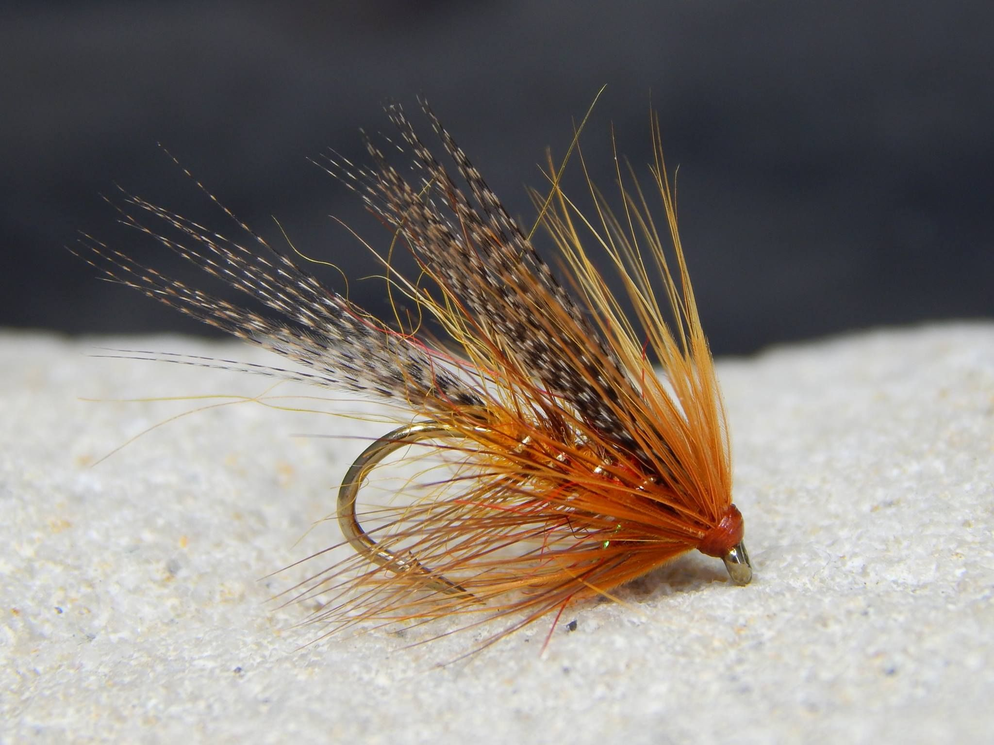 By Paul Caslin Fly Fishing Flies Trout Fly Fishing Lures Fly Tying
