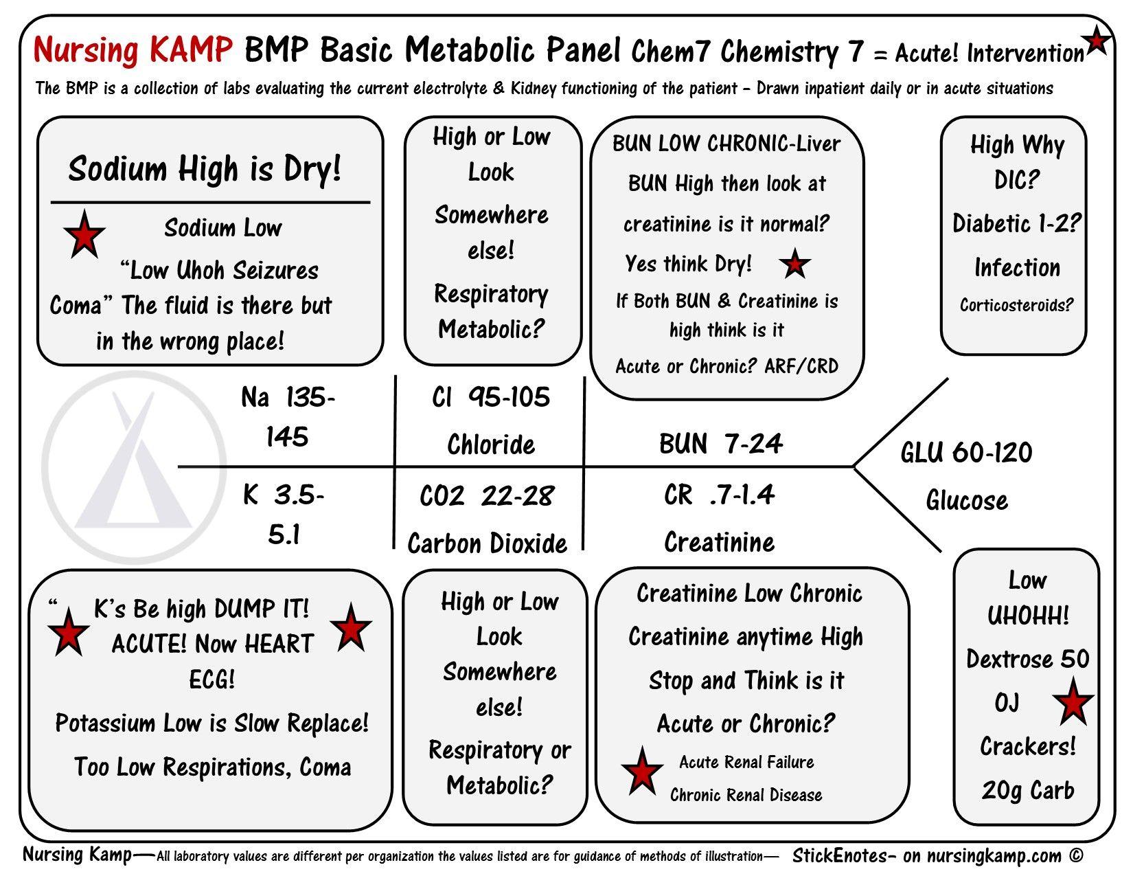 Nursingkamp Bmp Chem7 Fishbone Diagram Explaining