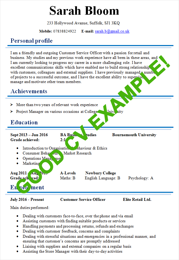 Example Of A Good Cv  Modles De Cv    Cv Examples