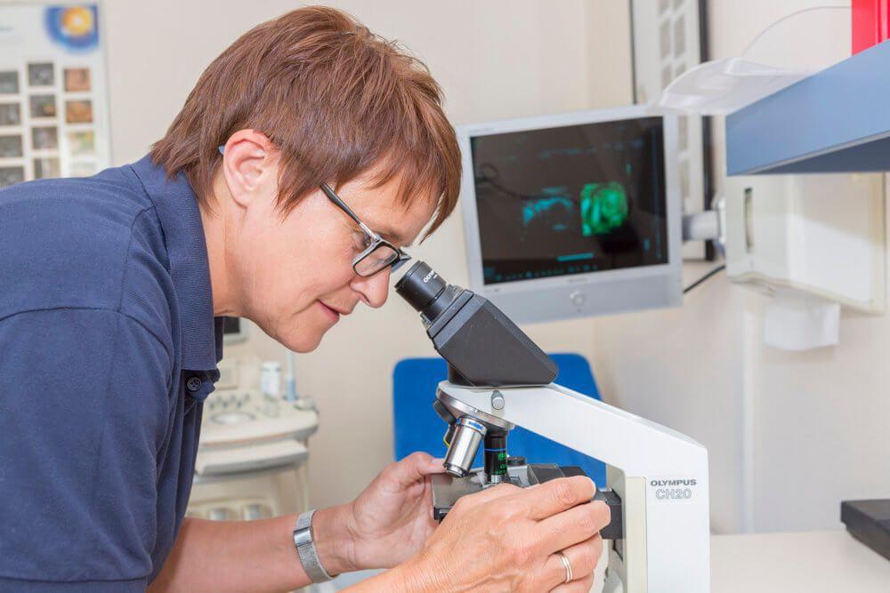 Dr Sajogo Nordhorn
